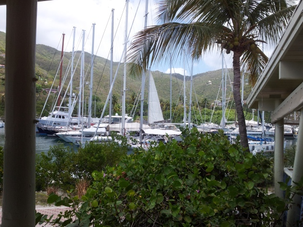 marina van Nanny Cay met mangrove op de achtergrond